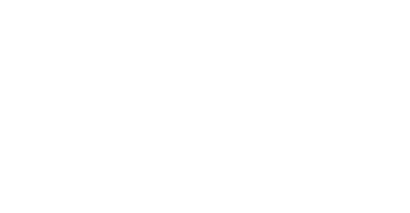 Legal Compliance Consultants